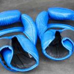 Boksehandsker (2018) – 10 gode handsker til sandsæk, fitness & træning