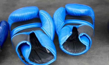 Boksehandsker (2019) – 10 gode handsker til sandsæk, fitness & træning