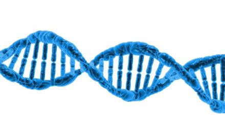Alt om proteiner – Forstå egenskaber og kostkilde nemt & hurtigt