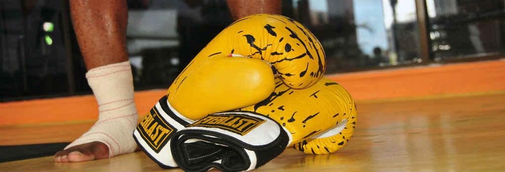 find den gode everlast boksehandsker til træning