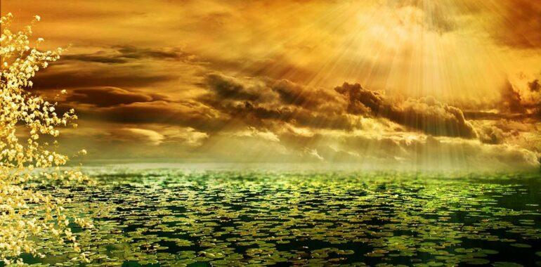 ændre dine vaner og nyd det ligesom man nyder den dejlige sol