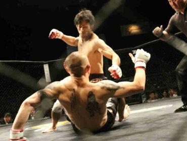 MMA termer? Find svaret på dine spørgsmål her