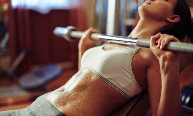 Træningsbænk guide – Find den bedste multi, flad- eller skråbænk