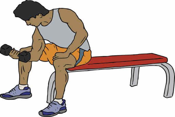 find den rigtige bænk til dit træningsbehov