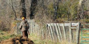 Hvorfor ikke bruge outdoor og jagt som god motion( + sjov )