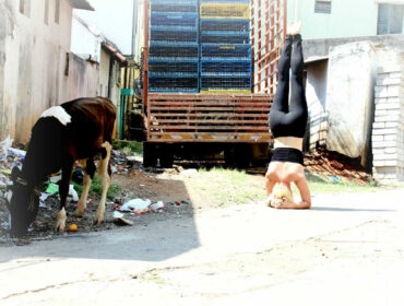 Hvad er Ashtanga yoga?
