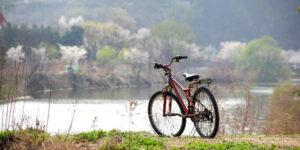 Hvorfor cykling er den gode motion for dig?