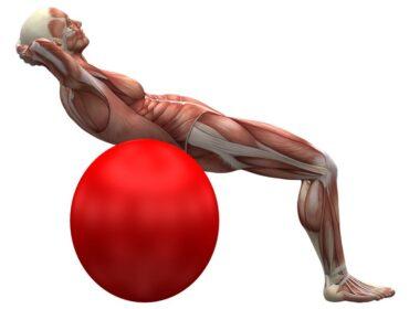 brug pilates bolde test til at finde den bedste